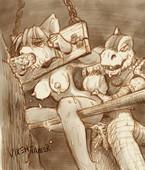 Misc - Star Fox