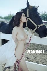 wanimal 258p 102mb yinapianshe