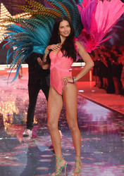 Victoria's Secret Show (2015)